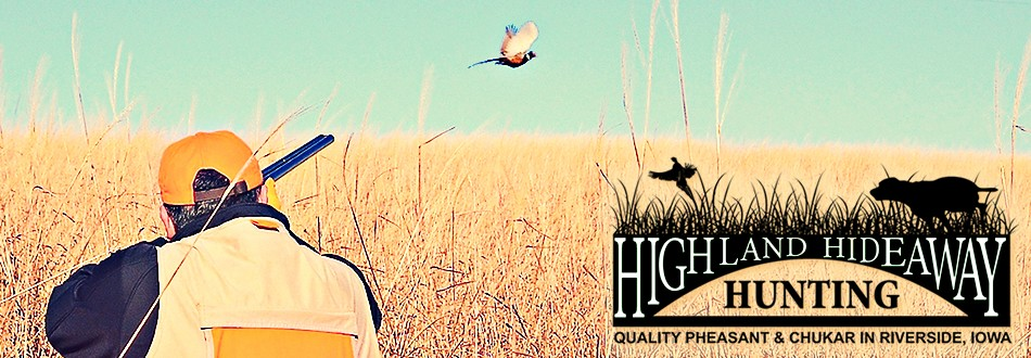 Iowa's Best Pheasant & Chukar Hunting