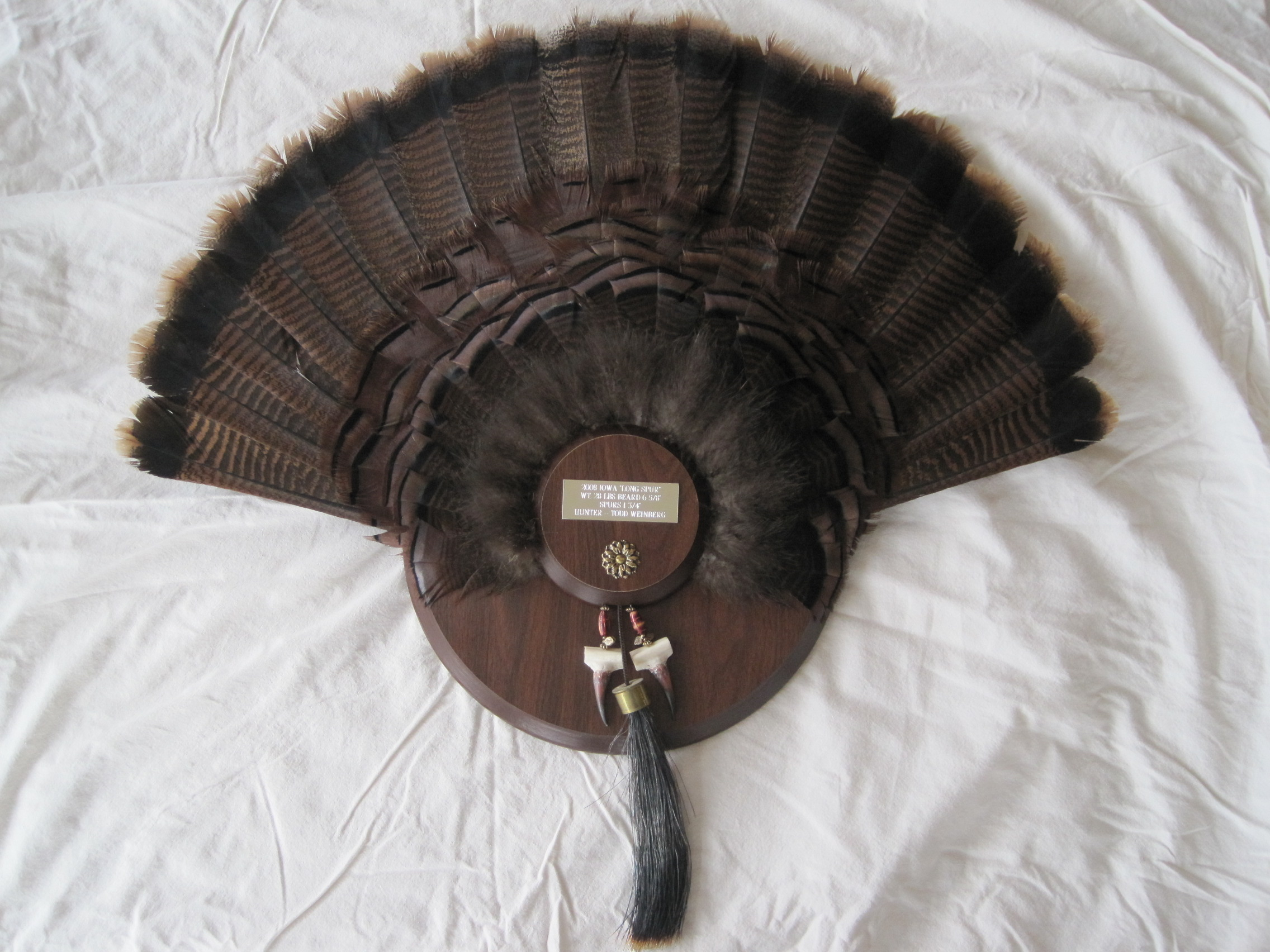 Turkey Tail Taxidermy as well The Butterfly Expandable Round Glass Dining Table moreover 20688479516892396 likewise Getting A Good Whitetail Deer Mount together with Room Escape Live Action Virtual Reality. on taxidermy shop ideas